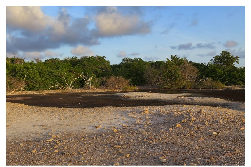 Dry island landscape